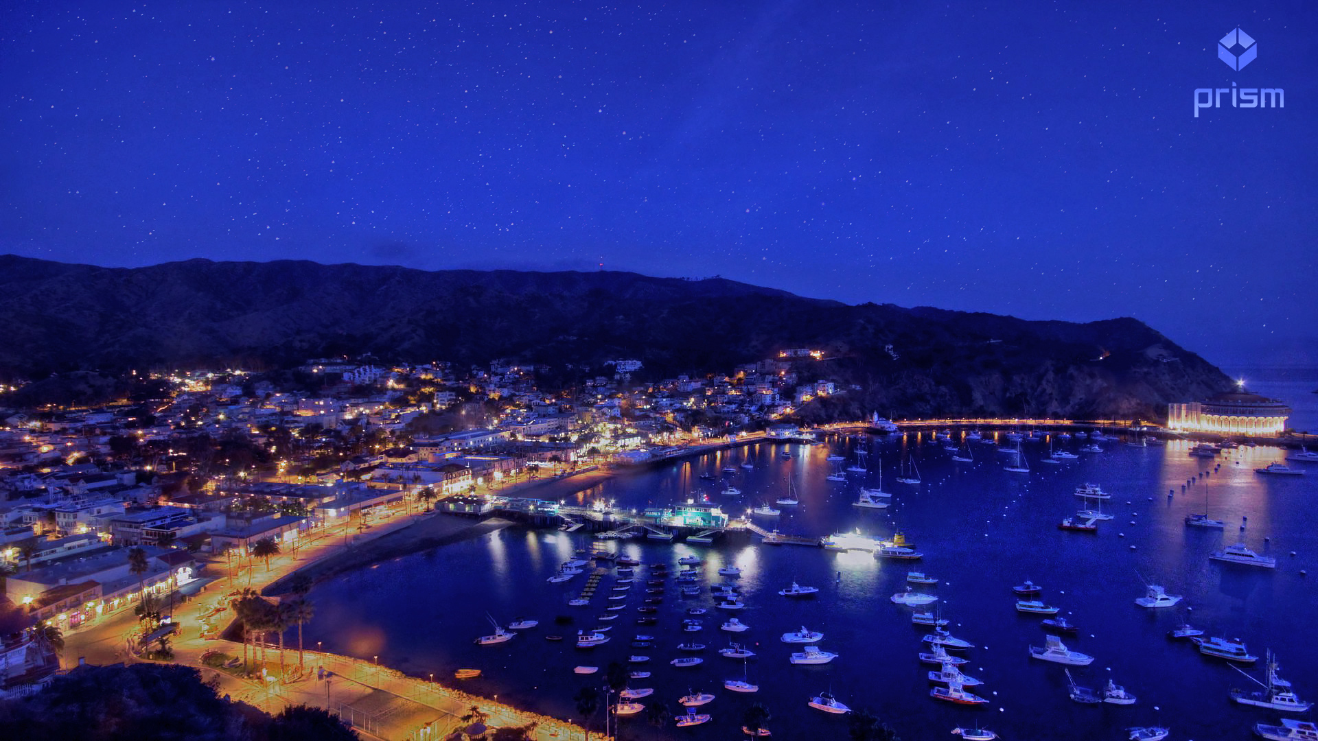 Violet   starry night catalina island